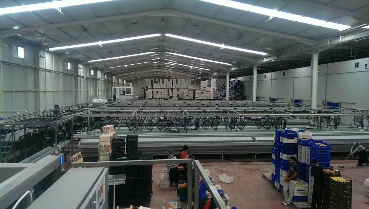 אחד המפעלים של בוריס וולפמן